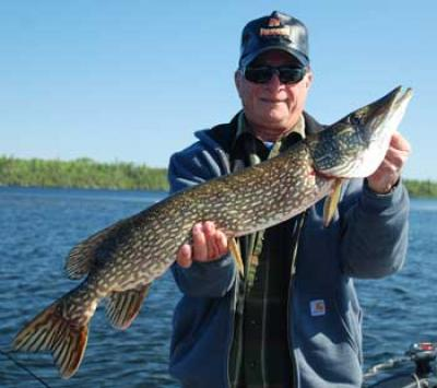 great northern pike fishing lodge in ontario canada