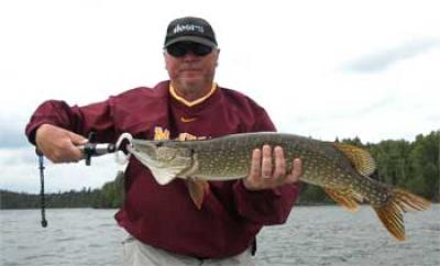 Many BIG Northern Pike caught fishing Canada at Fireside Lodge