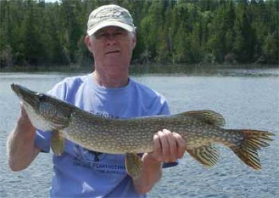 Fireside Lodge super BIG Northern Pike in Canada