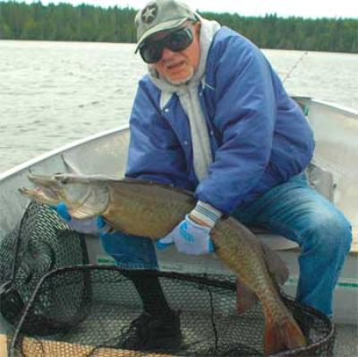 Big Musky are Heavy Fishing at Fireside Lodge Canada
