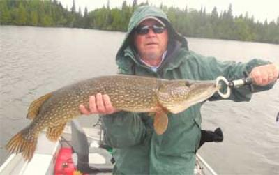 Rainy Day BIG Northern Pike Fishing in Canada