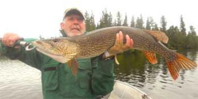 Super Northern Pike Fishing at Fireside Lodge Canada