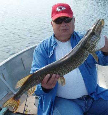 Wilderness Fishing for Northern Pike at Fireside Lodge Canada