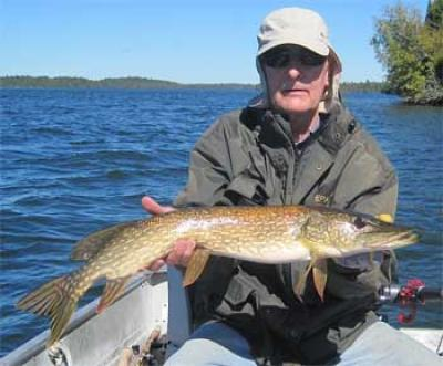 Many Northern Pike Fishing at Fireside Lodge Canada