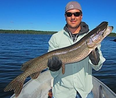 Super Northern Pike Catch Fishing at Fireside Lodge in Canada