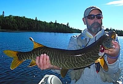 Fabulous Tiger Muskie Fishing at Fireside Lodge in Canada