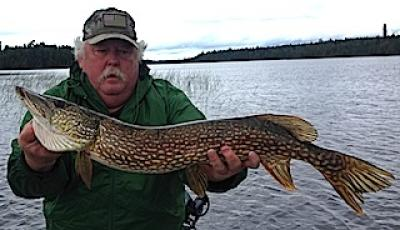 Big Northern Pike Fishing The Reeds at Fireside Lodge in Canada