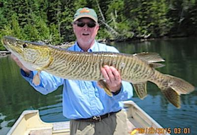 GREAT BIG Tiger Muskie Fishing at Fireside Lodge in Canada