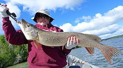 Special Trophy Northern Pike Fishing at Fireside Lodge in Canada