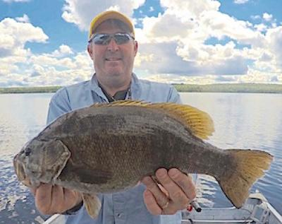 Bigger Better Trophy Smallmouth Bass Fishing at Fireside Lodge in Canada