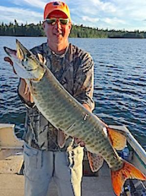 Big Bulging Muskie Fishing at Fireside Lodge in Canada