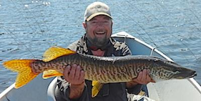 Brute Tiger Muskie Fishing at Fireside Lodge in Canada