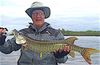 Fun Muskie catch Fishing Fishing At Fireside Lodge in Canada