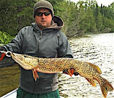 Fly Fishing for HUGE Northern Pike at Fireside Lodge in Canada