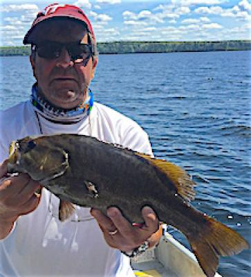 BIG Brownie Smallmouth Bass Fishing at Fireside Lodge in Canada