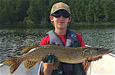 Many Good Northern Pike Fishing at Fireside Lodge in Canada