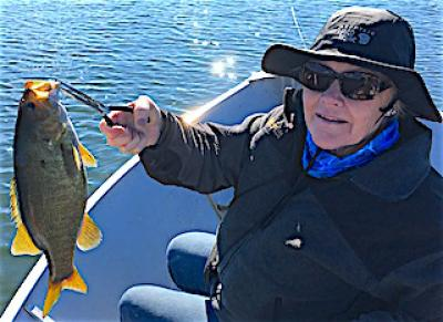 Teach BIG Smallmouth Bass Tactics Fishing at Fireside Lodge in Canada