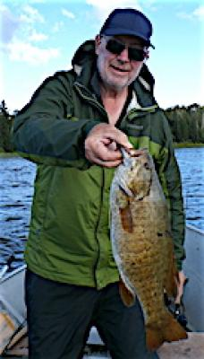 Bulging Trophy Smallmouth Bass Fishing at Fireside Lodge in Canada