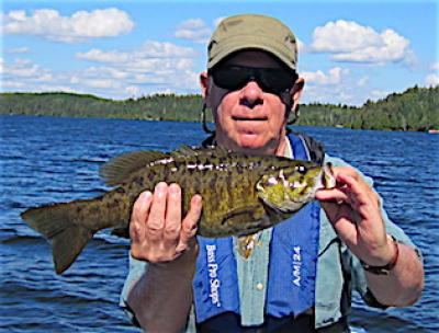 Regular Trophy Size Smallmouth Bass Fishing at Fireside Lodge in Canada