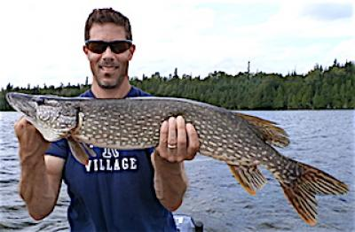 August Northern Pike are FAT Fishing at Fireside Lodge in Canada