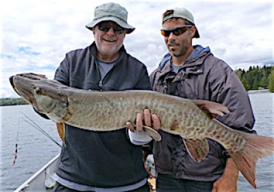 Muskie Beast Fishing at Fireside Lodge in Canada