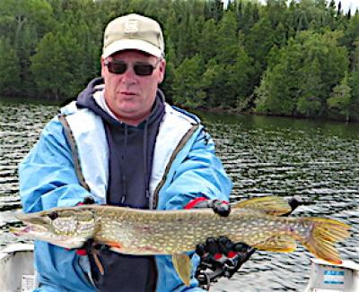 Huge Numbers of Pike Fishing at Fireside Lodge in Canada