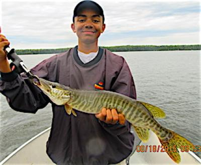 Tiger Muskie Fishing is Awesome at Fireside Lodge in Ontario Canada