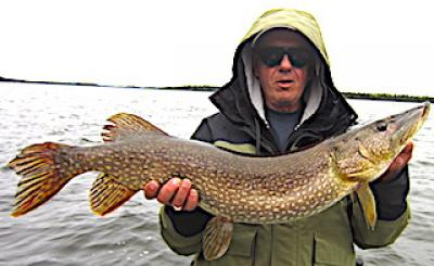 BIG Early Spring Northern Pike Fishing at Fireside Lodge in Canada