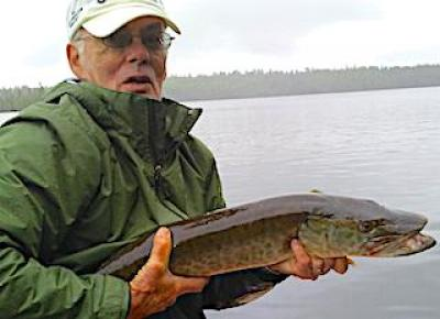 Great 1st Muskie Fishing at Fireside Lodge in Canada