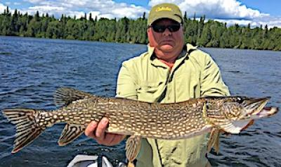 BIG Northern Pike Southern Stlye Fishing at Fireside Lodge in Canada