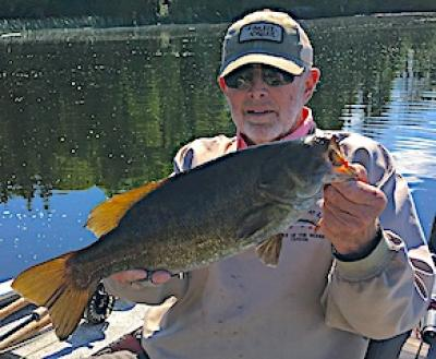 Fly Fishing Large Trophy Smallmouth Bass at Fireside Lodge in Canada