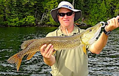 Regular Big Northern Pike Fishing at Fireside Lodge in Canada
