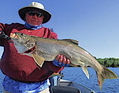 Massive Trophy Lake Trout Fishing at Fireside Lodge in Ontario Canada