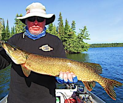Common Wide Body Northern Pike Fishing at Fireside Lodge in Canada
