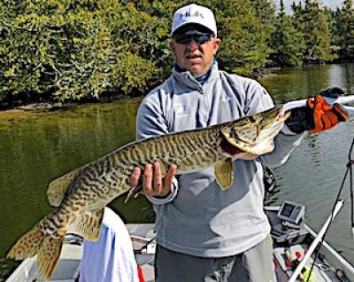 Great Fall Fishing for Tiger Muskie at Fireside Lodge in Canada
