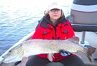 Giant Trophy Northern Pike Fishing Fireside Lodge Canada by Denise Law