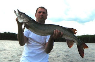 44-inch Trophy Muskie Fishint at Fireside Lodge by Tim Stewart