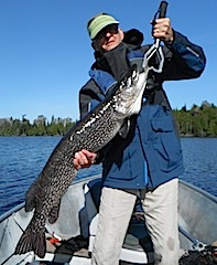 Trophy 45-inch Northern Pike Fishing at Fireside Lodge by Bryan Neel lll