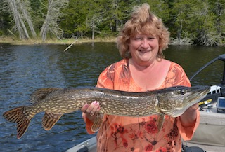 Big Northern Pike by Diane Siebenthal at Fireside Lodge in Canada