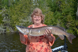 My 1st Trophy Northern Pike Caught Fishing at Fireside Lodge by Diane Siebenthal
