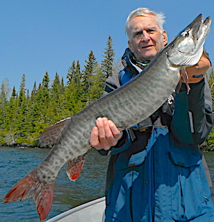 Muskie While Smallmouth Bass Fishing by Bryan at Fireside Lodge in Canada