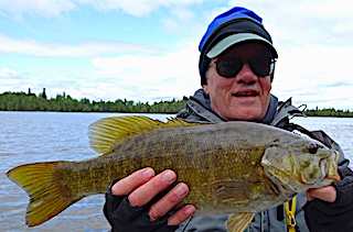 One Of 11 Trophy Smallmouth Bass Fishing by Paul at Fireside Lodge in Canada