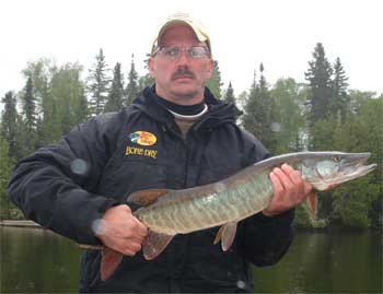 Musky fishing is amazing in Canada