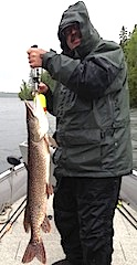BIg Northern Pike Fishing Canada by Bob Fischer