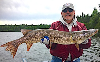Trophy Northern Pike Fishing at Fireside Lodge in Canada by Tony Cnambers