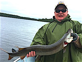 GREAT BIG Muskie catch Fishing by Tim Bergen