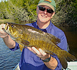 23 Trophy Smallmouth Bass in 1 Day Fishing at Fireside Lodge in Canada
