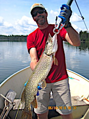 Big Thick Northern Pike Fishing at Fireside Lodge by Bill