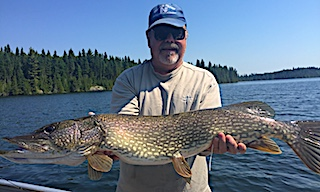 BIG Northern Pike Fishing by Stu at Fireside Lodge in Canada