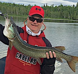 Muskie Surface Fishing with a Zara Spook by Craig at Fireside Lodge in Canada